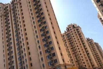河北沧州小伙追涨买房自嘲成婚刚需跌了也无悔